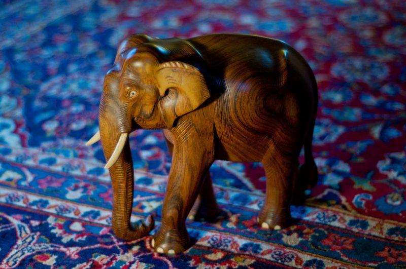 Elefanten i rommet 800x531 - Elefanten i rommet!  Om demokratiske kostnader og konsekvenser: Vil vanstyre spare kostnader i fremtiden?