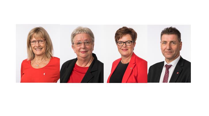 bransa - Andersen, Brandsdal, Greni og Lauvås: Konferanse 7. mai – kommer du? Påmelding her